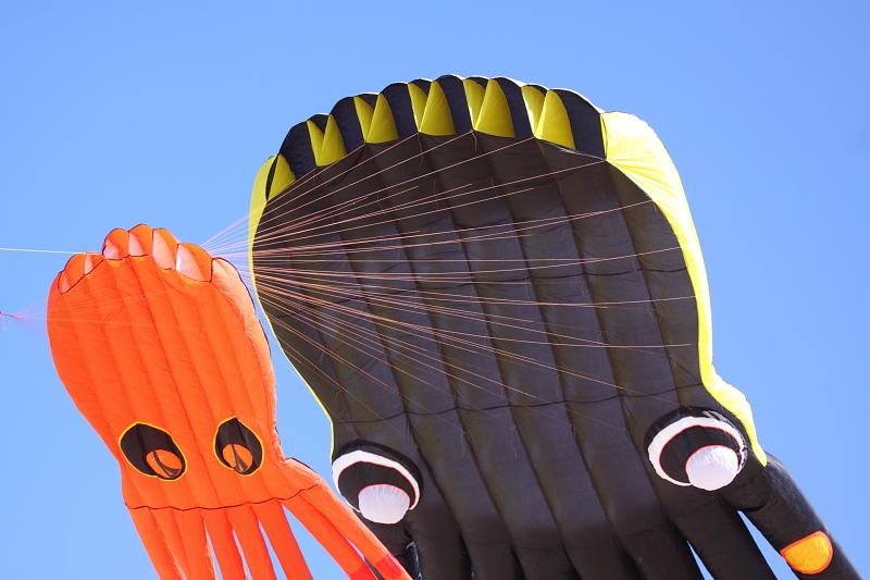 Japanese kite Festival