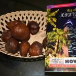150425-balai-salak-snakefruit-phphuoc-01_resize